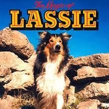 http://fripounette02.cowblog.fr/images/lassie2.jpg